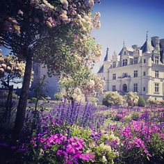 les jardins de Château de Chenonceau, Loire Valley France