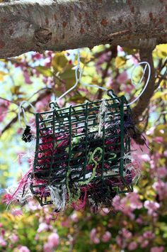 Put yarn scraps in a suet feeder for birds to use to build nests