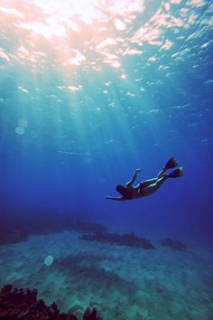 Kelsey Finn is at it again. Underwater photography. http://blog.swell.com/photo-tip-kelsey-2 @SWELL @Kelsey Finn