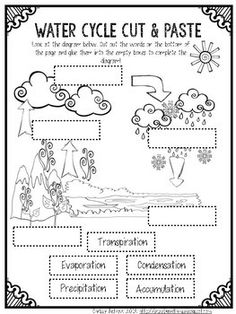 28 Ideas For Science Education Ideas Water Cycle Kindergarten Science, Elementary Science, Science Classroom, Teaching Science, Science Education, Teaching Map Skills, Water Cycle Activities, Science Activities, Science Experiments