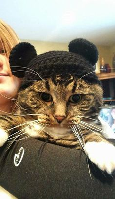 Mickey Mouse Cat Hat