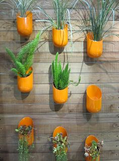 Wall planters from Wallter