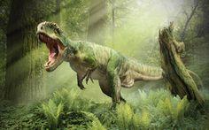 Fonds d'écran Dinosaure : tous les wallpapers Dinosaure