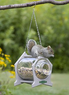 Hanging Squirrel Jar Feeder