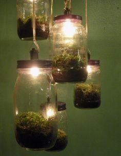 Terrarium light fixtures! A hanging light-garden! | Spark | eHow.com