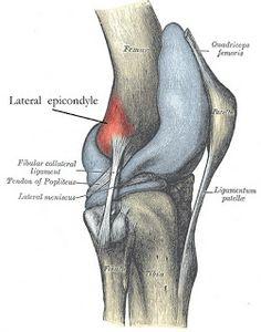 douleur à l'insertion du tractus ilio tibial, fréquent chez les coureurs