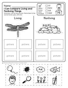 freebie living and non living things sort teaching ideas pinterest kindergarten. Black Bedroom Furniture Sets. Home Design Ideas