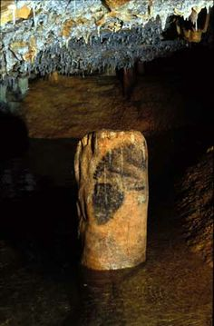 We can now state that the Cosquer Cave used to be one of the most important cave art sites in Europe, comparable to Lascaux, Trois-Frères, Altamira or Chauvet. Ancient History, Art History, Horse Head Drawing, Art Pariétal, Paleolithic Art, Prehistoric Age, Stone Age Art, Beneath The Sea, Art Sites