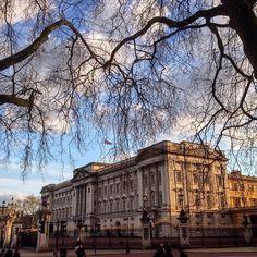 버킹햄궁에 있는 해질녘 찍었어요 그린파크 아름다웠어요! Buckingham Palace at sunset from nearby Green Park  #여행 #여행스타그램 #런던 #버킹햄궁 #그린파크 #해질녘 #겨울 #외국인 #맞팔 #소통 #travel #tourist #trip #london #buckinghampalace #sunset #greenpark #uk #england by siraugustin