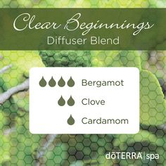 - Want to know about cardamom essential oil? I've included all there is to know about doTERRA cardamom essential oil uses including Diffuser & food recipes. Bergamot Essential Oil Uses, Cardamom Essential Oil, Clove Essential Oil, Essential Oil Diffuser Blends, Doterra Essential Oils, Natural Essential Oils, Doterra Blends, Doterra Diffuser, Therapeutic Grade Essential Oils