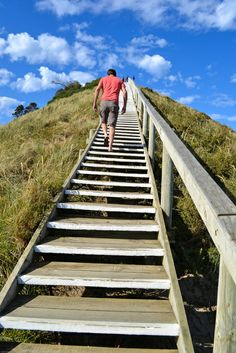 """Walking up the stair at """"The Neck"""" which connects the North and South halves of #brunyisland. #tasmania #discovertasmania Image Credit: Heike Herrling"""