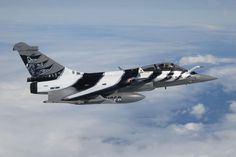 Rafale in Tiger Paint Scheme for 2012