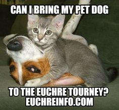 Can I bring my pet dog to the Euchre tourney?