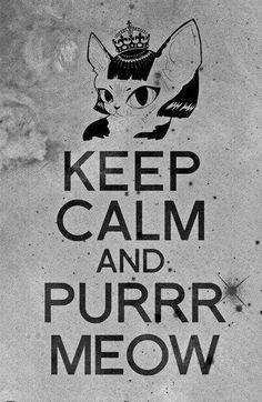 Purrrrrrrrr From: https://www.facebook.com/pawsitivefurriends