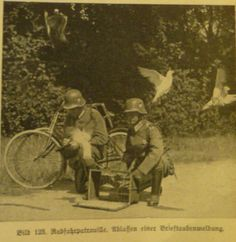 WW2 Germans soldiers with messenger pigeons