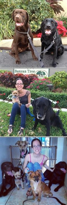 Entrust your dog to this reliable pet nanny. Aside from pet sitting, Karina Santos-Sedano is also available for home dog boarding, dog walking and dog grooming.