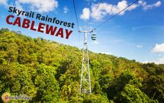 Reasons to Visit #Cairns, #Australia: Skyrail Rainforest Cableway