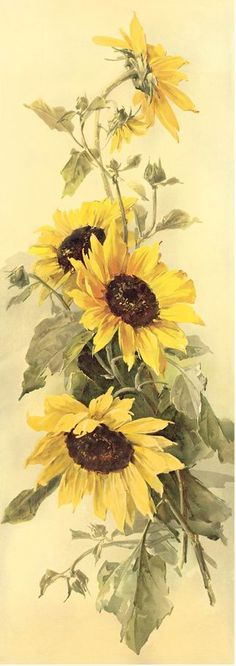 Painting sunflower acrylic 17 Ideas - Sites new Sunflower Drawing, Sunflower Art, Fabric Painting, Painting & Drawing, Body Painting, Watercolor Flowers, Watercolor Paintings, Drawing Flowers, Watercolors