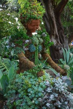 Succulents made beautiful...topiaries, pictures and walls all made from succulents.