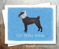 Black Chinese Shar Pei Dog Greeting Card Collection Get Well Soon Card - Funny dog in cone by TriPodDog