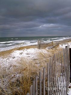 Winter on Cape Cod...no visitors...just Wonder Husband and Wifey