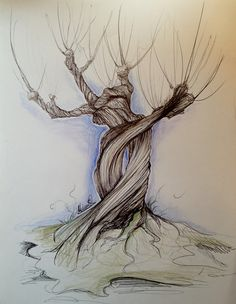 Whomping WIllow - Harry Potter - ©Melissa Quinn