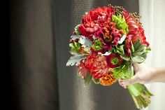 Blood red dahlias, coral ranunculus, gold and orange brain celosia, bells of ireland, coral zinnias, brunia berries, dusty miller, and variegated pittosporum.