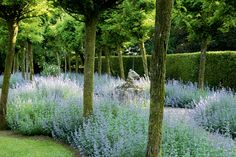 How to get the English country house look if you don't happen to own an English country house? It's easier than it sounds. Good gardens move with the times, and many in this gorgeously photographed book have new or simple elements for us to ponder: