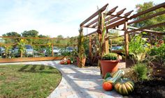 Beautiful entryway to Horticultural Therapy Garden System!