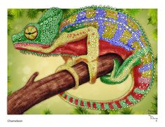 Tim Jeffs -  Detailed Animal Sketches 2 (PDF)  Chameleon Digital Colouring