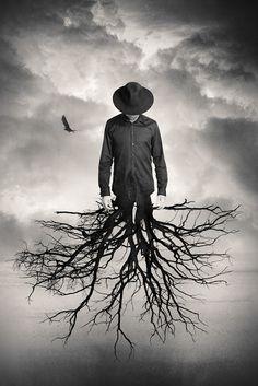 Envole-toi mais garde tes racines... / By Tommy Ingberg.