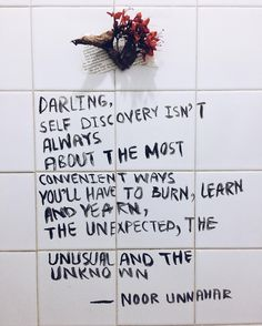 "2,178 Likes, 27 Comments - Noor Unnahar Siddique (@noor_unnahar) on Instagram: ""Darling, self discovery isn't always  about the most convenient ways you'll have to burn, learn and…"""
