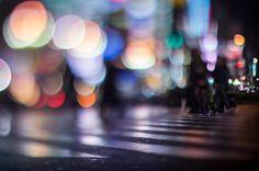 pedestrian crossing - 横断歩道