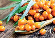 Rakytník: Dokonalý liek, ktorý si dopestujete v záhrade - Záhrada.sk Vitamin C, Sea Berries, Cosmetics Ingredients, Kraut, Clean Beauty, Superfood, Pesto, Natural Remedies, Flora