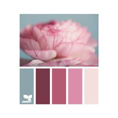 petalled tints ❤ liked on Polyvore featuring design seeds, colors, backgrounds, colours, color palette and filler