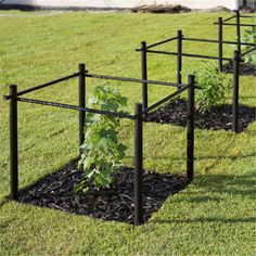 Bring Contrast Into Your Garden Design - Gardening Landscape Design, Garden Design, Patio Pergola, Growing Gardens, Home Vegetable Garden, Garden Trellis, Garden Structures, Dream Garden, Permaculture