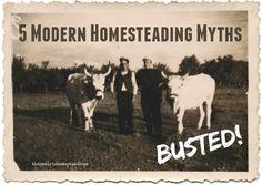 5 modern homesteading myths: BUSTED!
