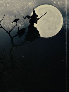 Halloween, crow on a branch, moon, and a witch Retro Halloween, Spooky Halloween, Holidays Halloween, Halloween Crafts, Happy Halloween, Season Of The Witch, Witch Art, Halloween Pictures, Samhain