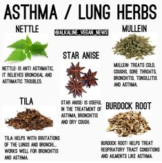 Awesome Home Remedies detail are offered on our website. Read more about natural home remedies. Healing Herbs, Medicinal Herbs, Natural Healing, Natural Health Remedies, Herbal Remedies, Asthma Remedies, Natural Medicine, Herbal Medicine, Herbs For Health