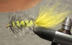 Great video on the simple tying method of one of the best streamer patterns ever developed. Substituing material such as crystal chenielle, seal fur and dubbing for the body gives you an lots of variety for your woolly-bugger