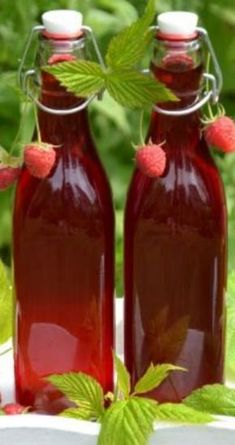 Nalewka malinowa (raspberry liqueur)