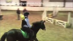 March Friday the was lucky for some of us. Aoibhe's second time jumping Jasmine and together they jumped their first double clear round. Beach Rides, Friday Night Lights, Show Jumping, Cob, Jasmine, Equestrian