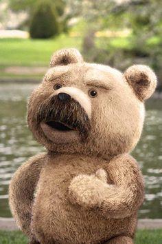 my fav ted pic Ted Bear, Funny Films, Tatty Teddy, We Bare Bears, Cute Teddy Bears, Baymax, Book Tv, Love Movie, Movies