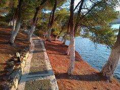 Туризм в Порос, Греция - 4521 отзыв и фотография - TripAdvisor Poros Greece, Trip Advisor, Jewel, Tourism, Vacation, Plants, Islands, Turismo, Vacations