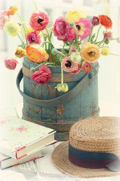 Gloss cor de rosa                                                                                                                                                      Mais
