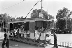 صورة واضحة للترام، القاهرة، سبتمبر 1942.