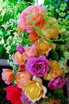 Super Ideas For Wall Paper Flowers Pink Color Palettes Beautiful Rose Flowers, Most Beautiful Flowers, Flowers Nature, Exotic Flowers, Pretty Flowers, Simply Beautiful, Flower Iphone Wallpaper, Flower Pictures, Belle Photo