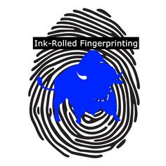 INK-ROLLED FINGERPRINTING - http://buffalonotaryservices.com/mobile-finger-printing/