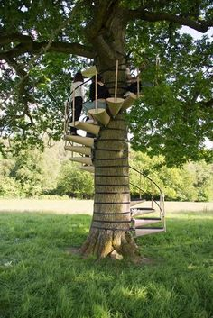 Turn a backyard tree into the perfect hangout spot using the tree trunk spiral staircase. This railed staircase wraps around the trunk without damaging the tree, making it a safe to climb and eco-friendly way to ascend to your treehouse. Modular Staircase, Spiral Staircases, Winding Staircase, Tree House Designs, Tree Canopy, Stairs Canopy, Window Canopy, Backyard Canopy, Garden Canopy