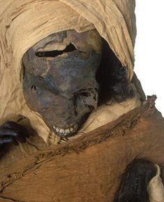 The Royal Mummies and portraits Egyptian Mummies, Egyptian Pharaohs, Egyptian Mythology, Egypt Mummy, Ancient Egypt History, Archaeology News, African American History, Lion Sculpture, Death